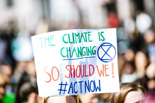 Harnessing the Influence of Business to Fight Climate Change