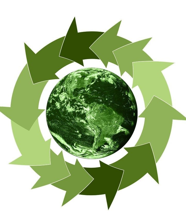 How to Make Your Business More Sustainable in 2021